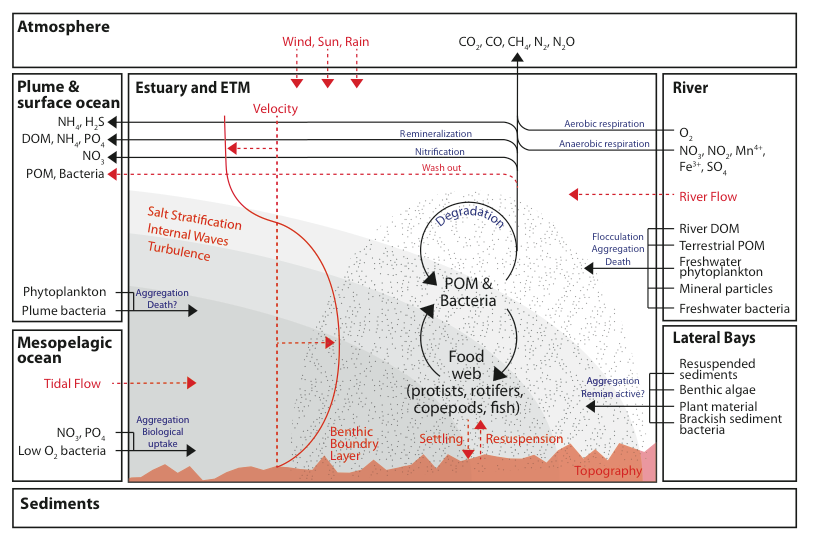 Science Initiative Iv Estuary Turbidity Maxima Center For Coastal