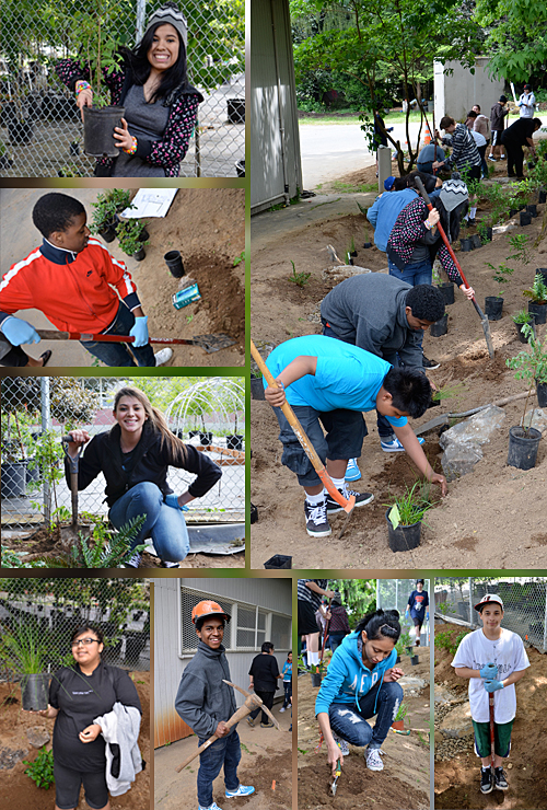 NAYA students build a bioswale