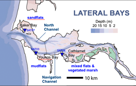 Lateral Bay sites