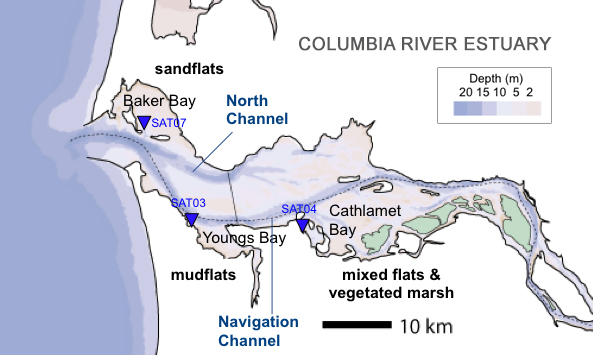 Graphic of Columbia River estuary