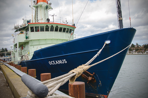 Oceanus is a mid-sized research vessel designed for expeditions lasting two to four weeks.